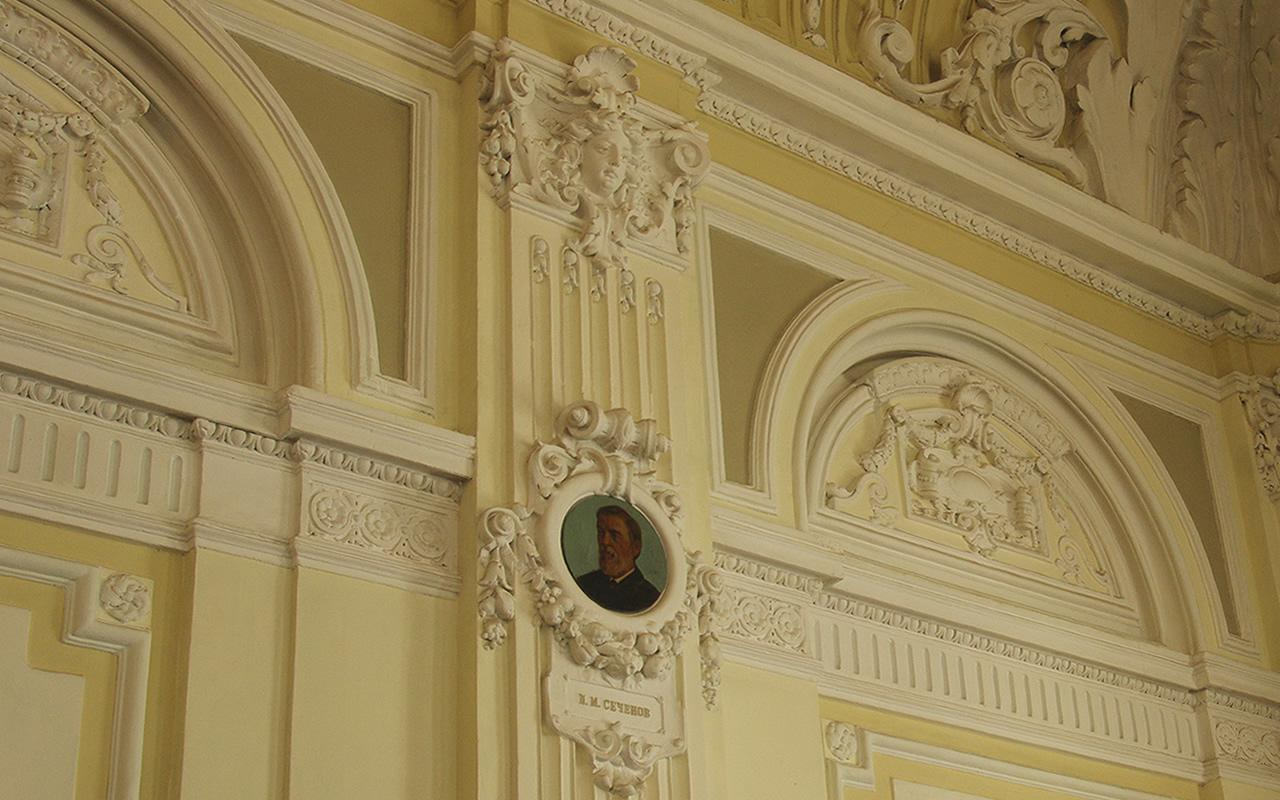 Велика читальна зала. Фрагмент стіни, оздобленої пілястрами з медальйоном